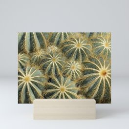 Cactus Parodia Magnifica Tropical Mini Art Print