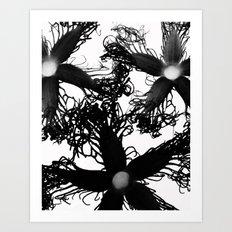 Three Black Flowers Art Print