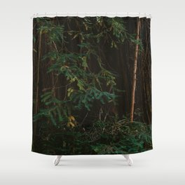 Redwood Forest III Shower Curtain