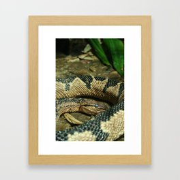 Looking At You Framed Art Print