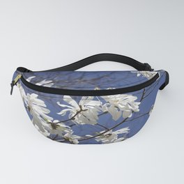 Star filled sky (Star Magnolia flowers!)      Edit Fanny Pack