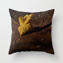 AEQUILIBRIUM Throw Pillow