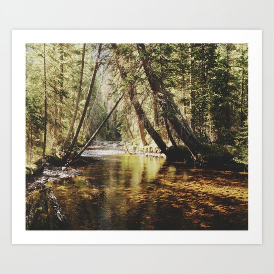 East Inlet Creek Art Print