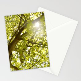 Green Tree 62 Stationery Cards