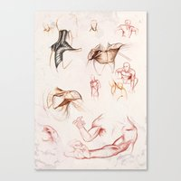 anatomy Canvas Prints featuring ANATOMY by Andreas Derebucha