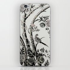 Peacock Tree Natural iPhone & iPod Skin
