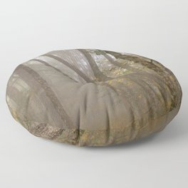 Misty Spruce Knob Forest Floor Pillow