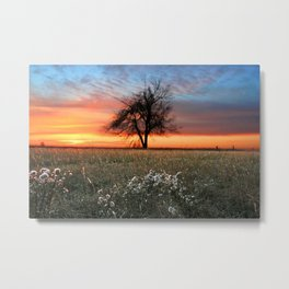 Lonely Tree Sunrise Metal Print