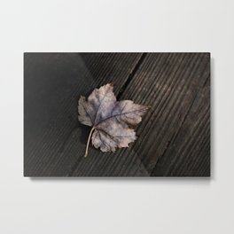 the lifelines of fall Metal Print