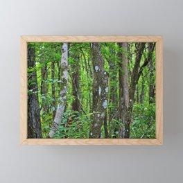Swamp Song Framed Mini Art Print