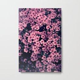 Many pink flowers - a flower bush Metal Print