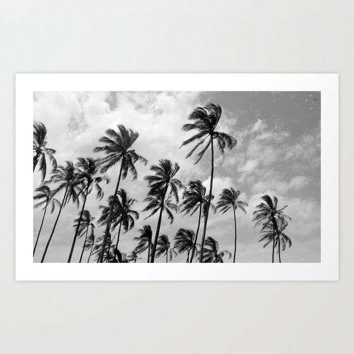 Palm Trees Hawaii Art Print