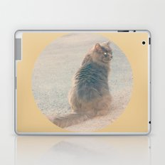 Smile Like A Cat Laptop & iPad Skin