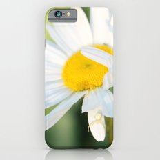 Smiling in the morning light iPhone 6s Slim Case