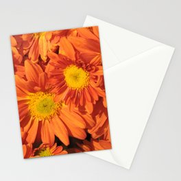 Petals a L'orange Stationery Cards