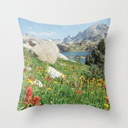 August Wildflowers in the Rockies Throw Pillow