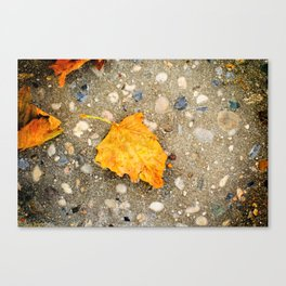 """Autumn Leaf"" Canvas Print"