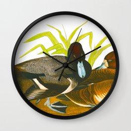 Scaup Duck Wall Clock