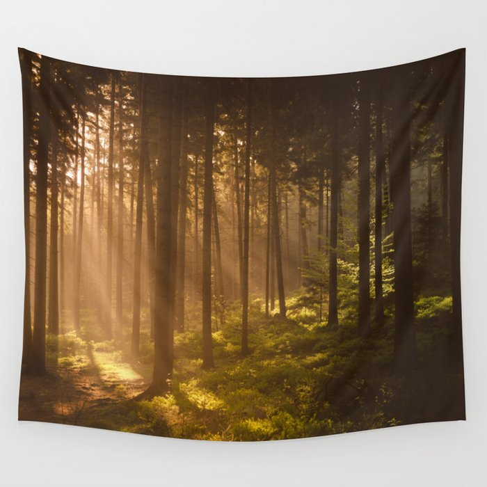 Morning Forest Wall Tapestry By Tomashudolin Society6