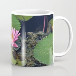 Water Lily, I Coffee Mug