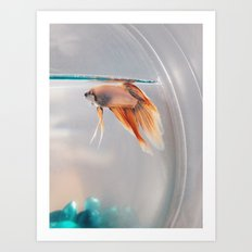 Fish in a fishbowl Art Print
