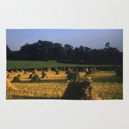English countryside * 1950's * Vintage Photo * Farm * Kodachrome * Color * England Rug