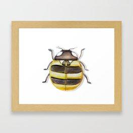 Ladybug Bee Framed Art Print