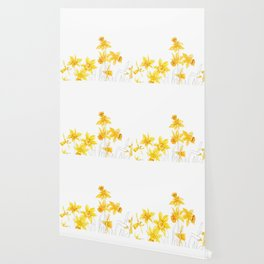 yellow daffodils field watercolor and pencil Wallpaper