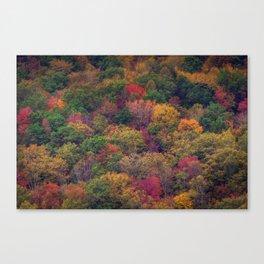 Fall Mountainside Canvas Print