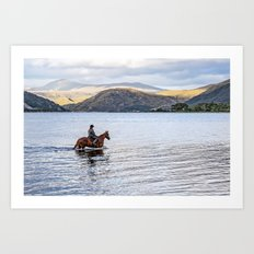 Horse at Airds Bay Loch Etive Art Print