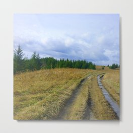 The Traveler's Trail Metal Print