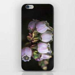 Blueberry Bells iPhone Skin