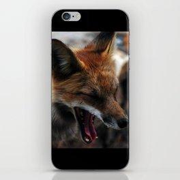 Sleepy Fox iPhone Skin