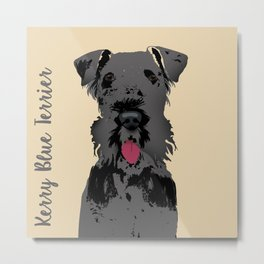 Kerry Blue Terrier Dog Metal Print