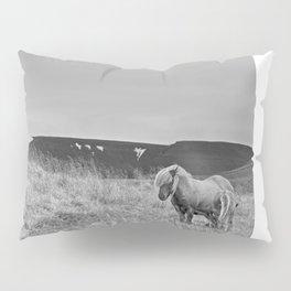 Guardian Pillow Sham