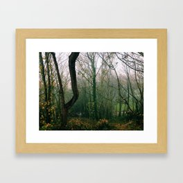 Autumn Reflections, Folkestone Kent Framed Art Print