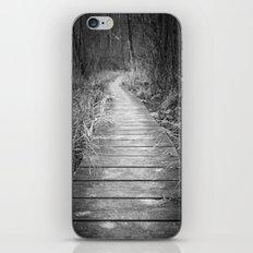 Marsh Boardwalk iPhone & iPod Skin