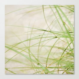 Green Wisps Canvas Print