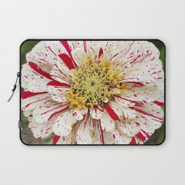 Candy Cane Zinnia Laptop Sleeve