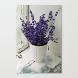 Lavender in the old window - blue floral photography wall art Canvas Print
