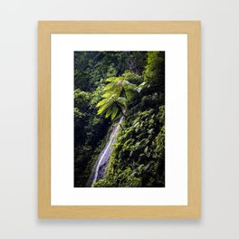 Waterfall Coming Down the Mountainside with Ferns and Lush Trees in Chocoyero-El Brujo, Nicaragua Framed Art Print