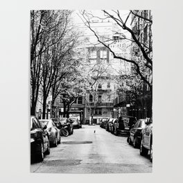 Tree Lined Streets in New York City Poster