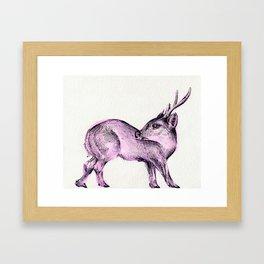 Hog Deer Framed Art Print