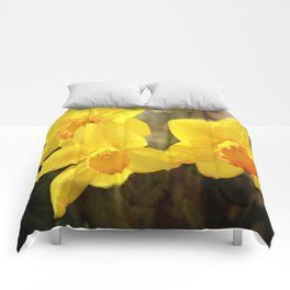 Yellow Trumpets - Daffodils Comforters