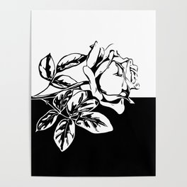 Single Rose Black and White Poster