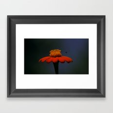 Beespoken Framed Art Print