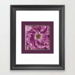 Dark Rose 1 Framed Art Print