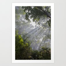 I Saw The Light Art Print