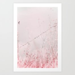 Birds on a wire II Art Print
