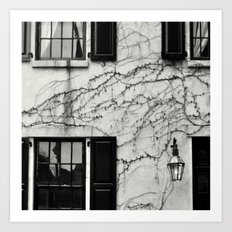 Vines on New York Building Art Print